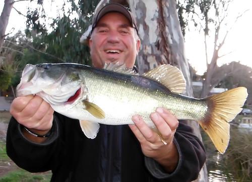 5-1 Pre-Spawn Bass