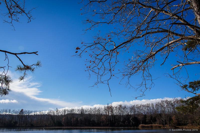 El azul del cielo en invierno