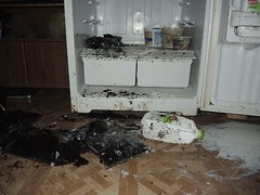 Fridge raid aftermath