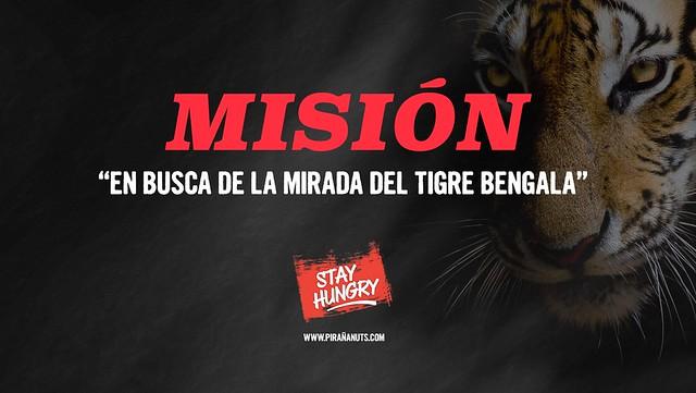 Misión: En busca de la mirada del tigre de Bengala (Comando Piraña)