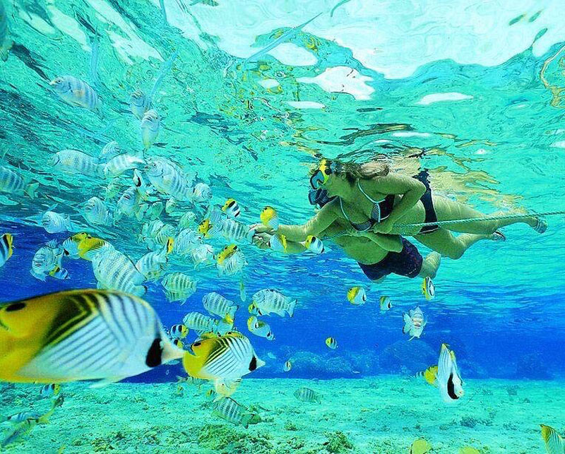 28-snorkeling-via-truly-paradise