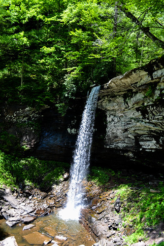 Waterfall on the Monongahela National Forest