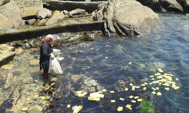《親親海洋》海女下海採石花菜前的祈福儀式。圖片來源:吳惠君。