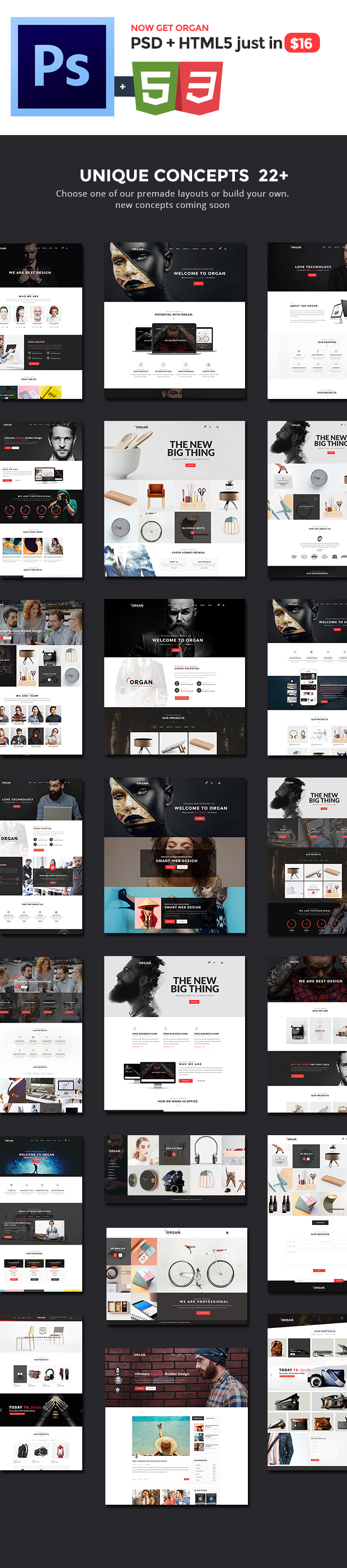 Organ - The Multi-Purpose Responsive HTML5 Template