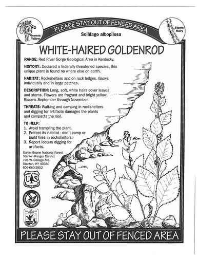 Interpretive signage posted near white-haired goldenrod sites