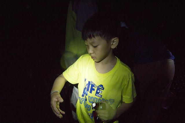 小朋友學習如何正確的和自然相處,溫柔的邀請毛毛蟲到自己的手上