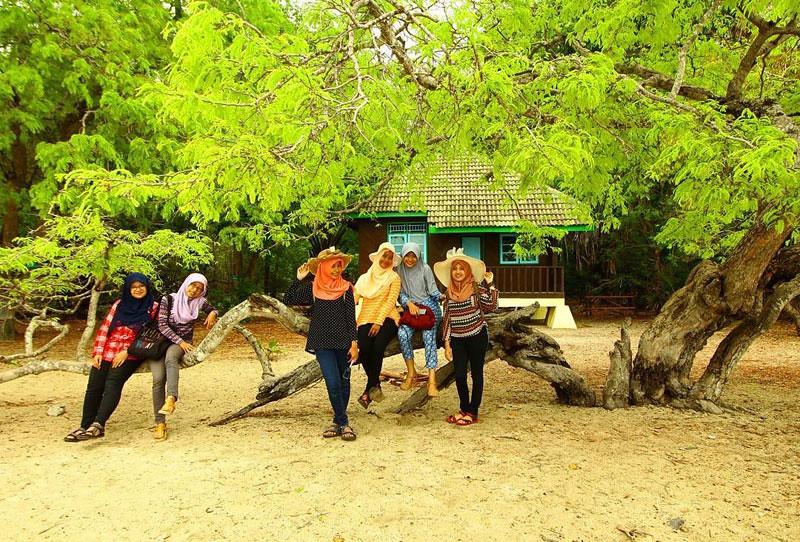 Baluran Bama Lodge