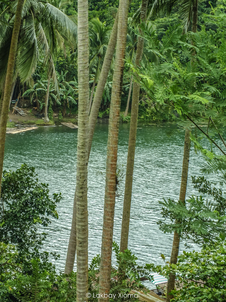 Lakbay Xiomai | San Pablo, Laguna - Pandin Lake - higher ground