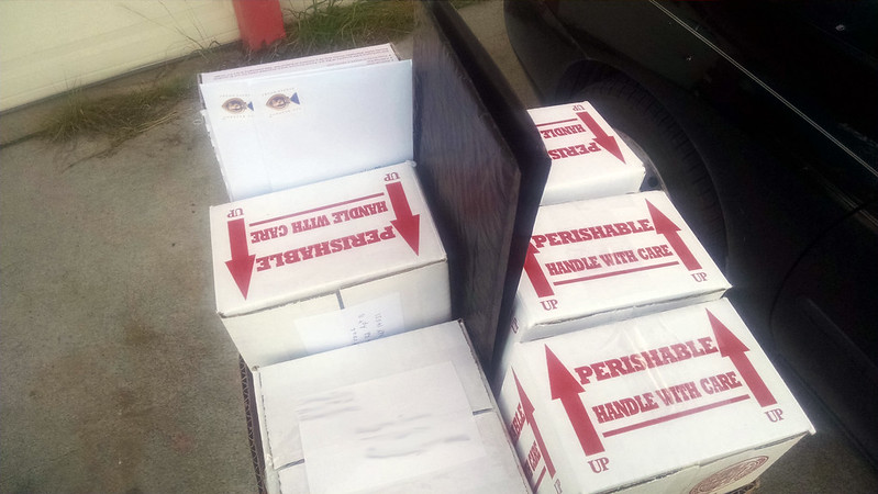 Gemmae packages being shipped off.