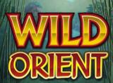 Online Wild Orient Slots Review