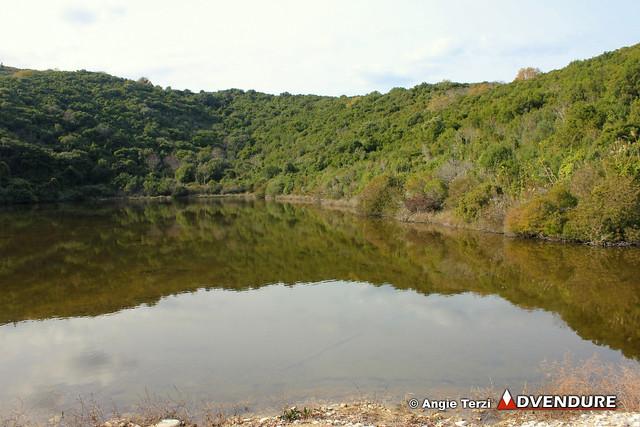 """Στις λίμνες του Ερημίτη """"κατοικούν"""" πάνω από 220 είδη πουλιών και η σπάνια Βίδρα!"""
