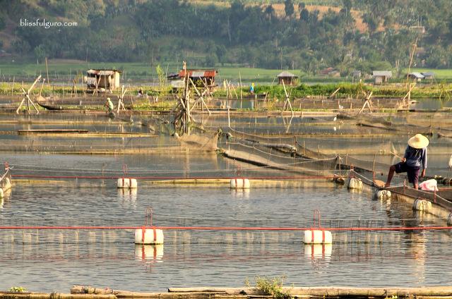 Lake Seloton Lake Sebu South Cotabato