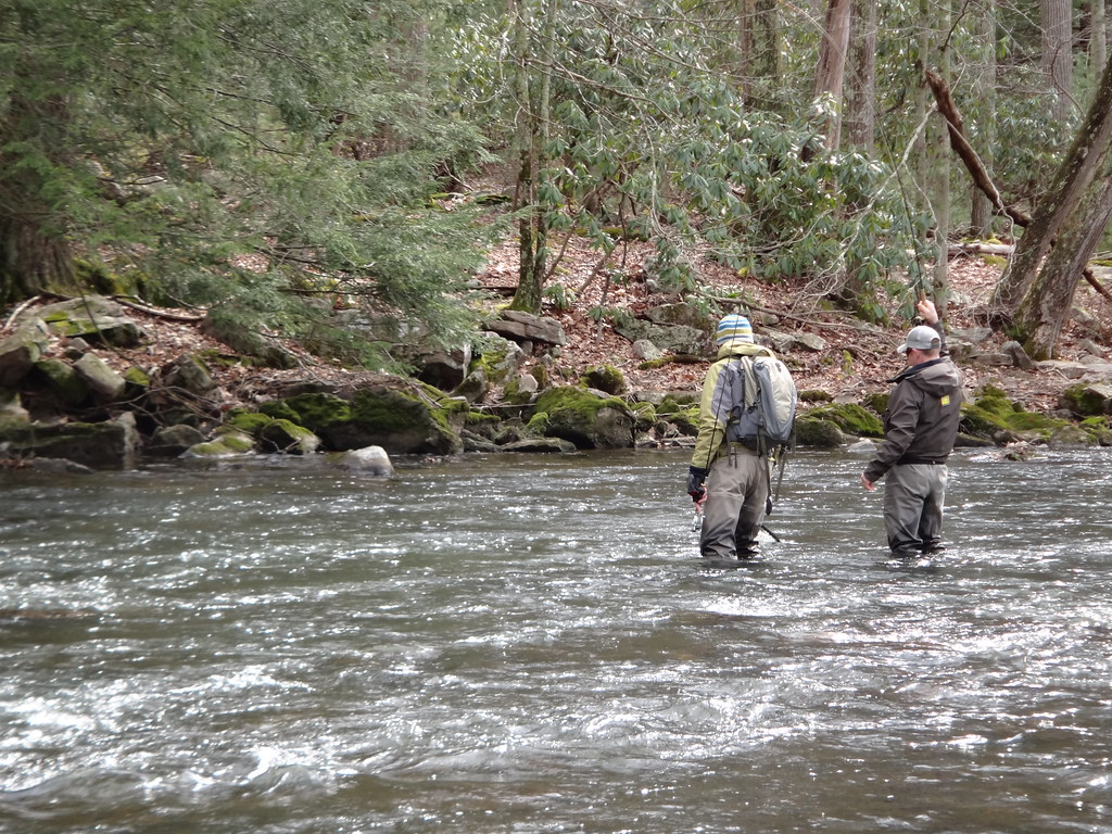 Ontario Fly Fishing lessons