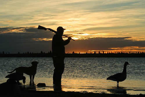 Photo of waterfowl hunter at dusk