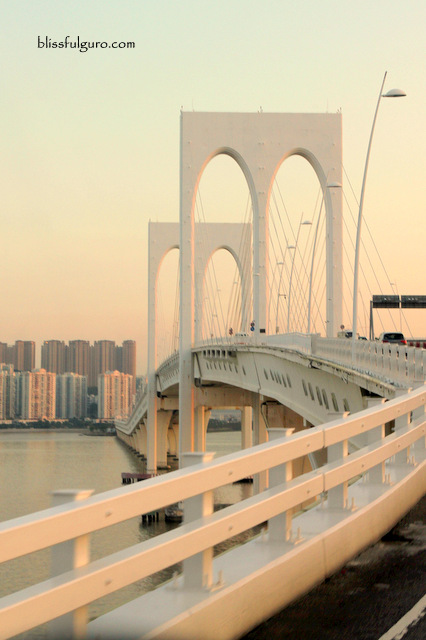 Macau Taipa Bridge
