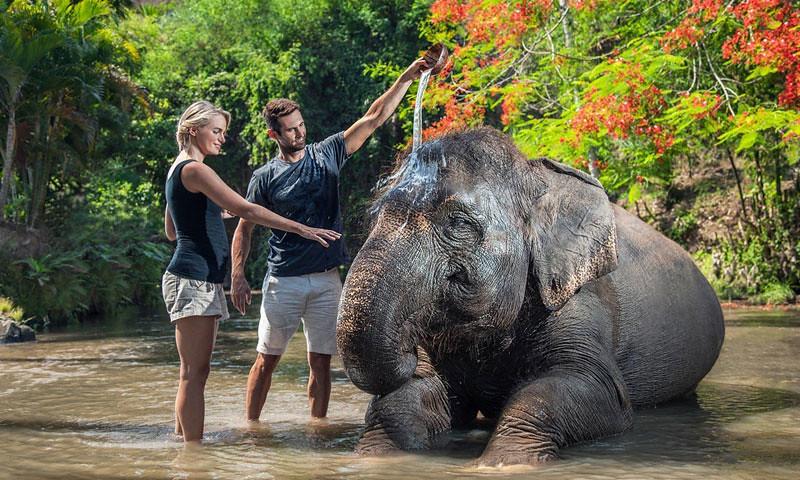 12-mahout