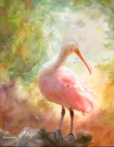 Image of a painted Roseate Spoonbill
