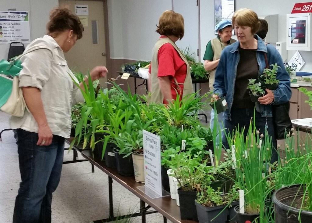 image of women buying plants