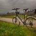 Riding on Véloroute du Vignoble d'Alsace