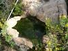 La source de l'étang Sud de Portu Novu