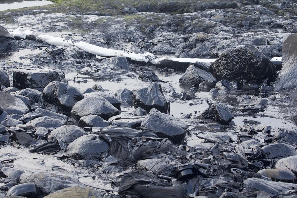潮間帶遭厚厚一層油汙覆蓋