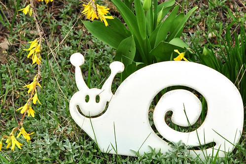 So schön blüht es zurzeit in Schwäbisch Hall. Eine duftende Farbenpracht, die dem Auge gut tut. Aprilwetter mit blauem Himmel. Da freut sich die Biene und der Mensch - und die Gartenschnecke lacht :-) Foto Brigitte Stolle April 2016
