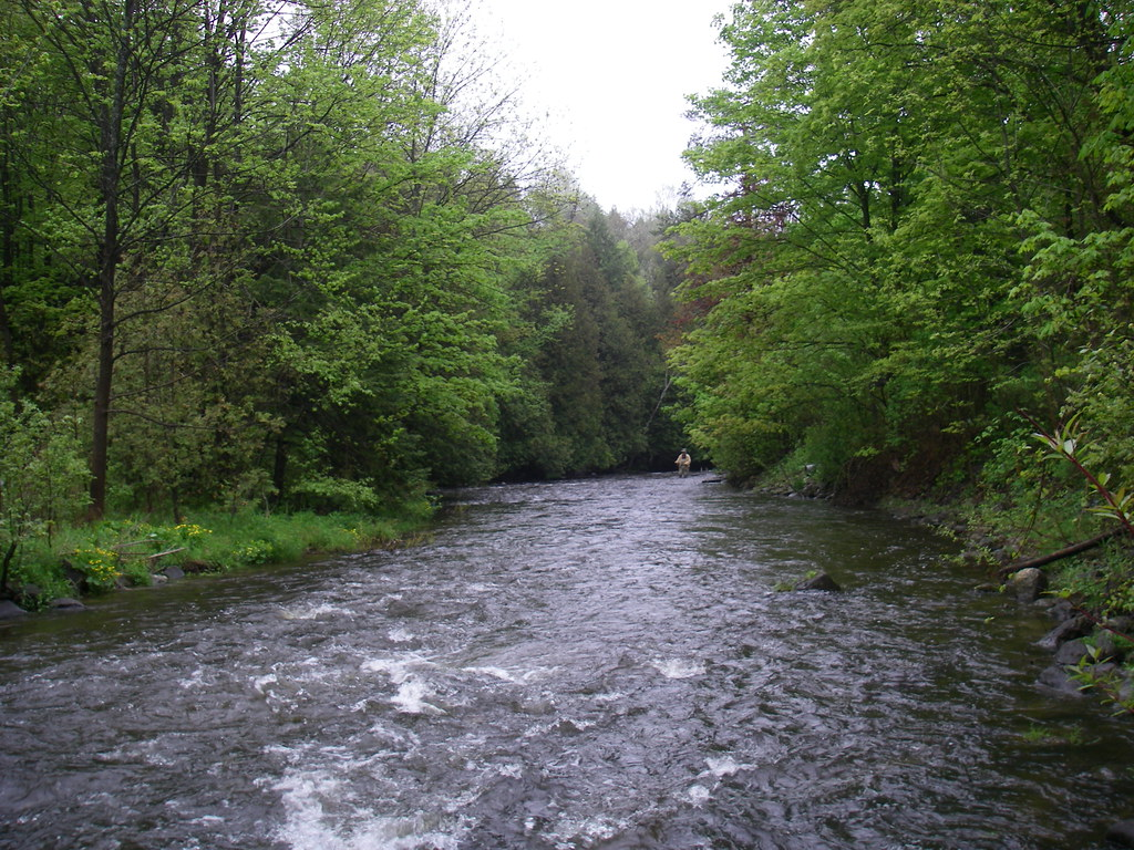 Ontarios Best Trout And Steelhead Rivers