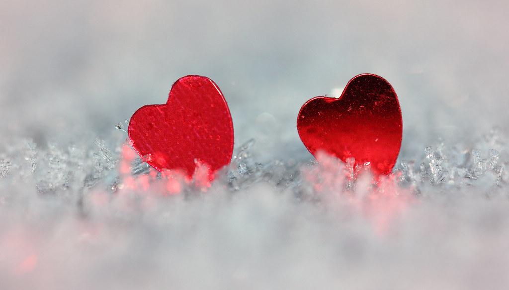 Two hearts | For today's Macro Mondays theme `hearts', I ...
