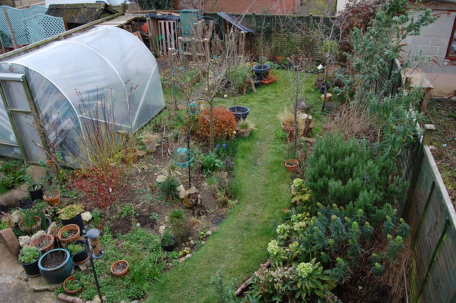 Looking down on the garden from an upstairs window