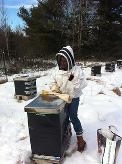 Girl tending honey bee hives in the winter time.