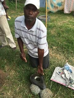 Martin Chirenda 2015 Shona Sculpture Zimbabwe Harare, 26 Feb 2016