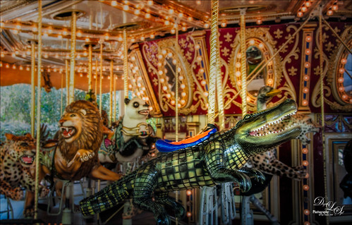 Image of the Carousel at the Jacksonville Zoo