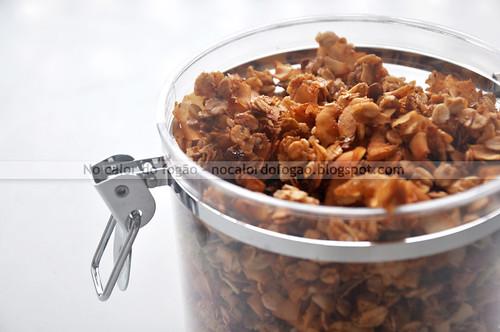 Granola com fitas de coco