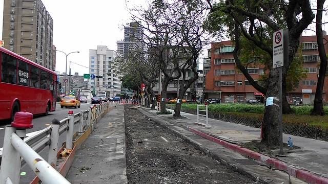 路面剛被刨開,民眾要求相關單位積極改善工法以護樹。攝影:林倩如。