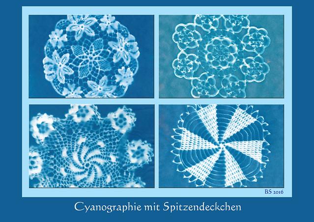 Cyanographie mit Spitzendeckchen. Cyanographie (Sunprint - Sonnendruck in blau). Bisher habe ich am liebsten mit gepressten Blüten und Pflanzenteilen experimentiert, siehe z. B. hier. Jetzt habe ich zur Abwechslung mal mit Spitzendeckchen gespielt, was ebenfalls recht nette Ergebnisse ergibt. Ein bisschen Sonne braucht es dazu aber unbedingt. Collage aus Cyanographien: Brigitte Stolle April 2016