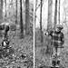 woods blog dyp 04