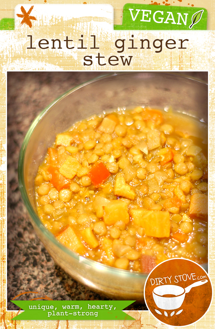 Vegan Lentil Ginger Stew Recipe | DirtyStove.com