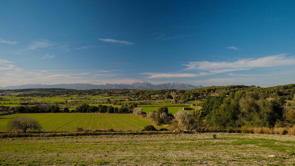 View over the Majorcan countryside to the Tramuntana Mountains