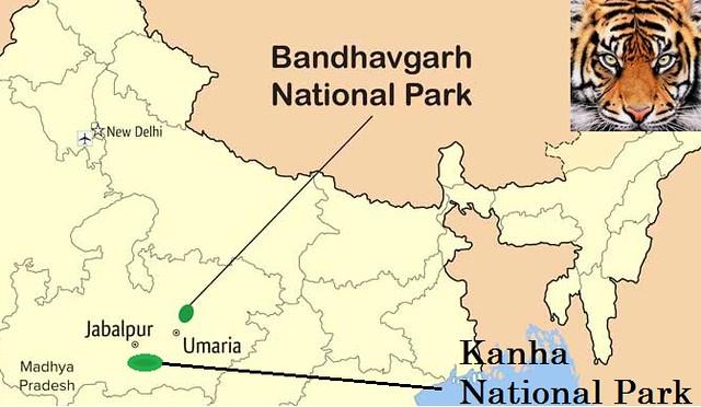 Mapa de los parques de Kanha y Bandhavgarh en India