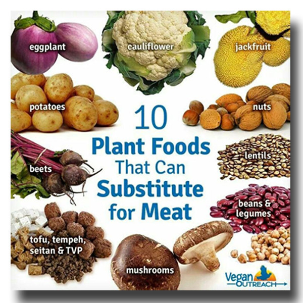 no meat plantpowerz plant food that can substitute for