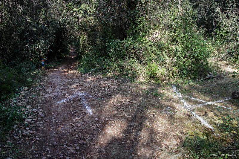 El camino de la Font de l'Horta