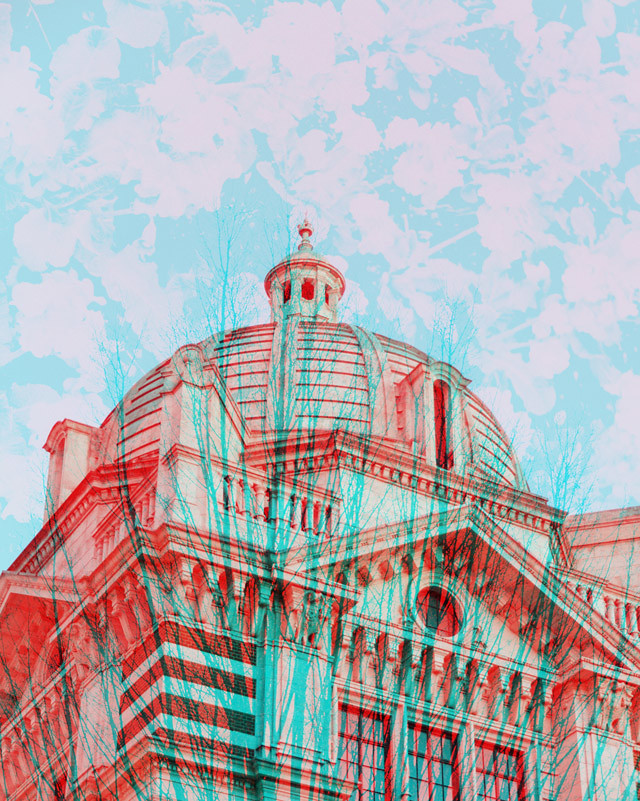 multiple exposure collage of victoria and albert museum, a tree and some primroses