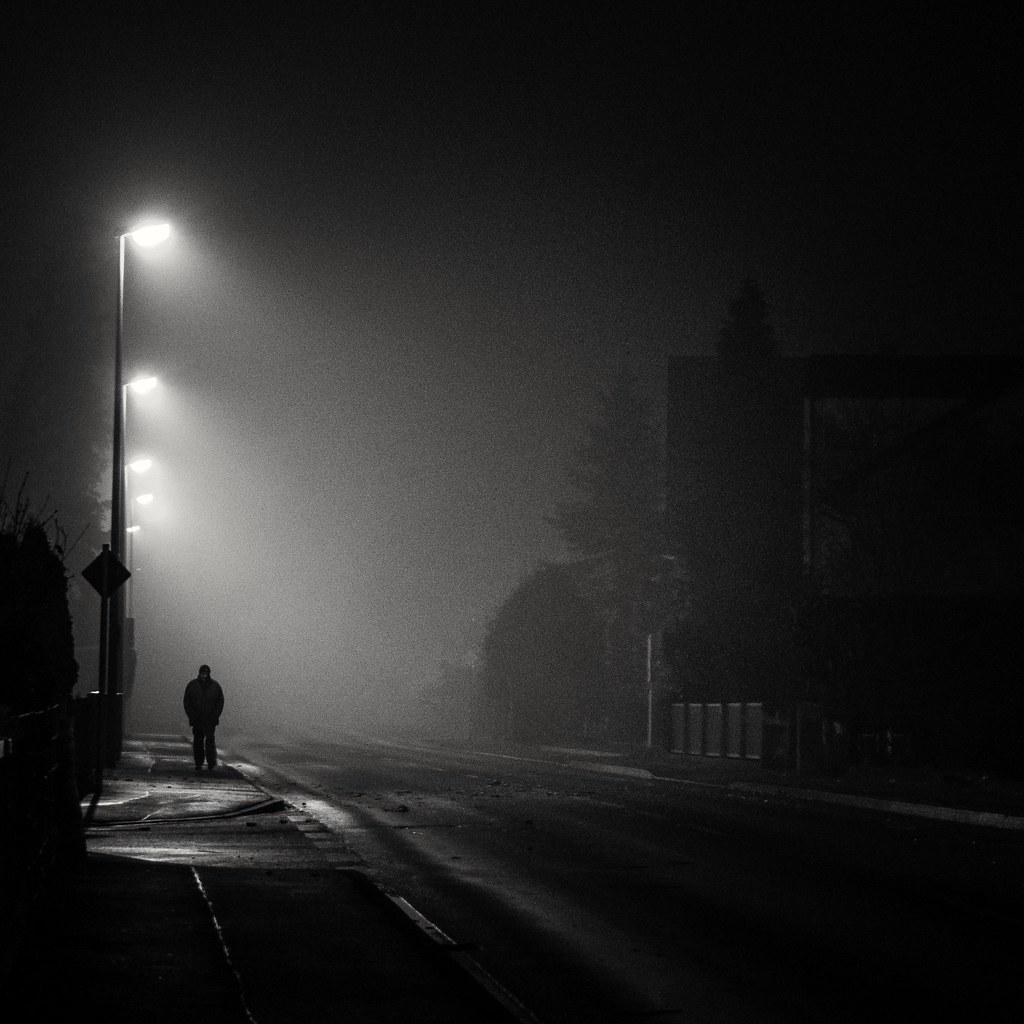 Dog Night Walking Lights