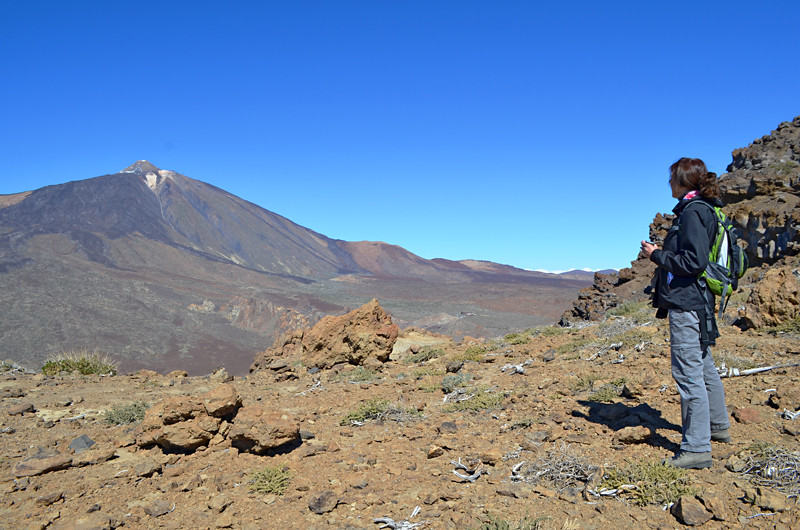 Mount Teide, Teide National Park, Tenerife