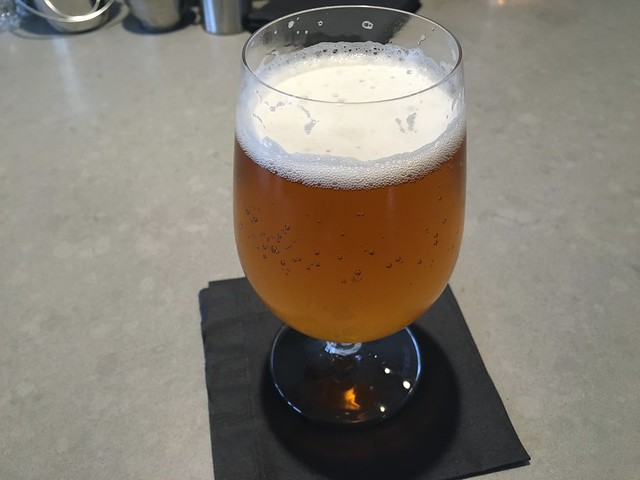 Berryessa La Fuerza Borracho lager - Hamlet