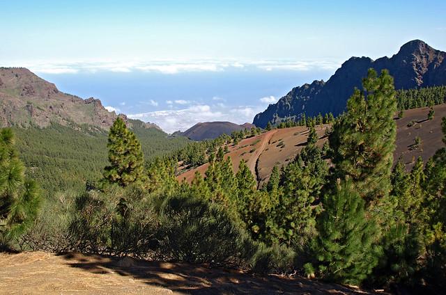 Caldera de Pedro Gil, Tenerife