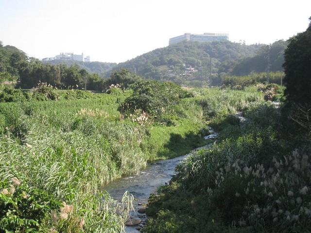 霄裡溪上的光電廠(右友達 左華映)廢水就排放入霄裡溪。圖片來源:地球公民基金會