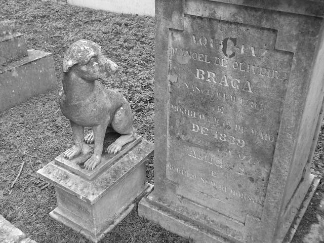 Tumba de perro en el Cementerio de los Placeres de Lisboa