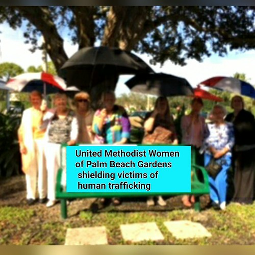 United Methodist Women Of Palm Beach Gardens Shielding
