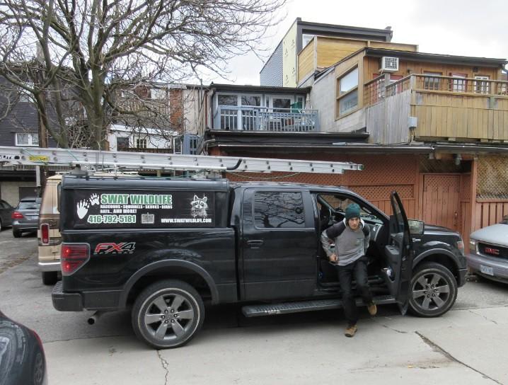 SWAT Wildlife in downtown alley Toronto